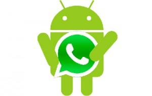 whatsapp-android-logo