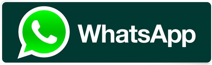 WhatsApp-kak-perevoditsa