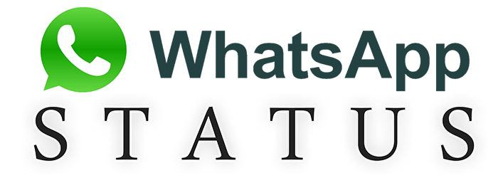 whats-status
