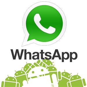 whatsapp-androidy-logo