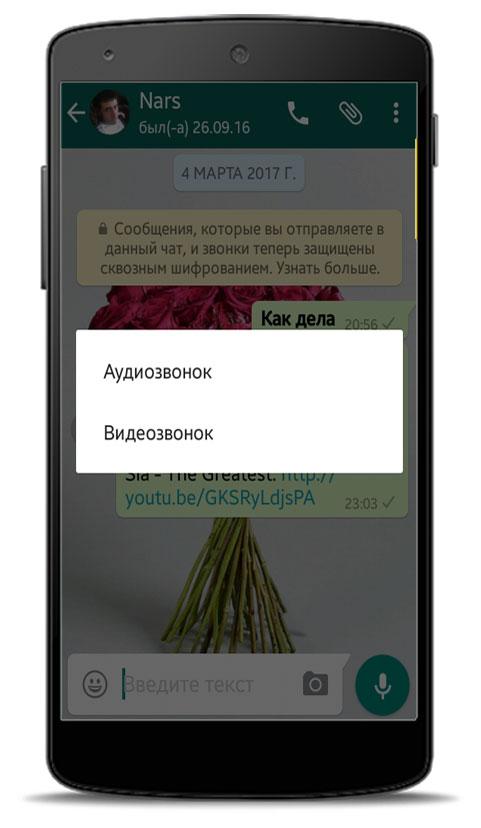 Основные возможности Ватсапа.