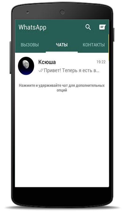 одна галочка в WhatsApp что значит