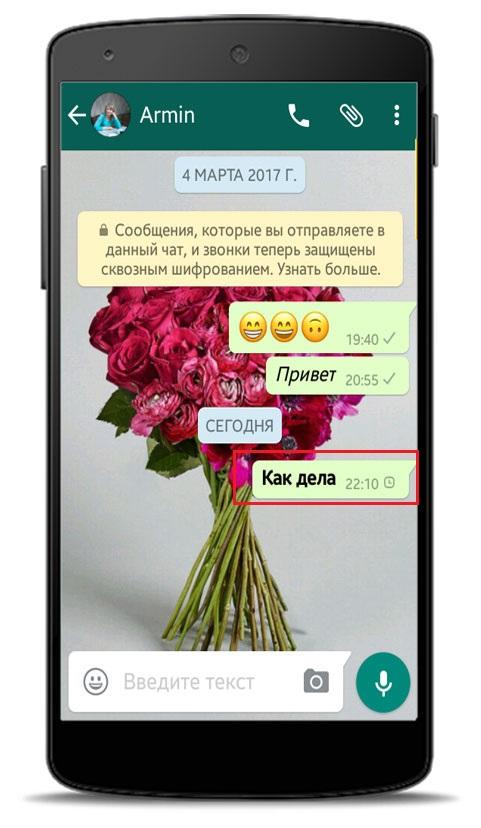 Как переслать сообщение в Ватсапе другому пользователю.