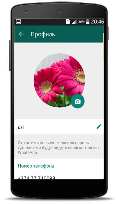 Kак получить API для WhatsApp?